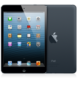 Black iPad Mini 16GB Wifi